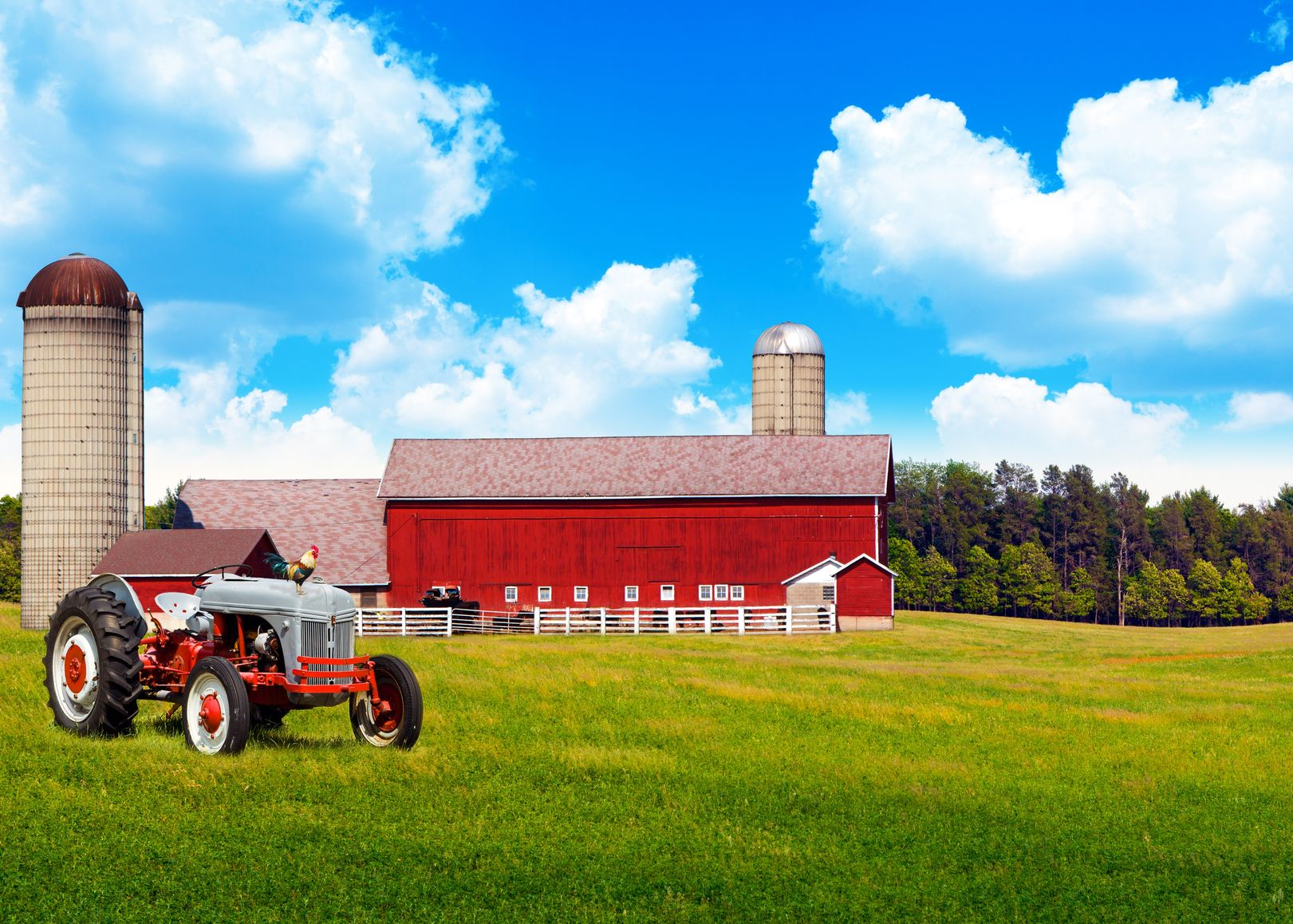 Wauwatosa Farm & Ranch Insurance